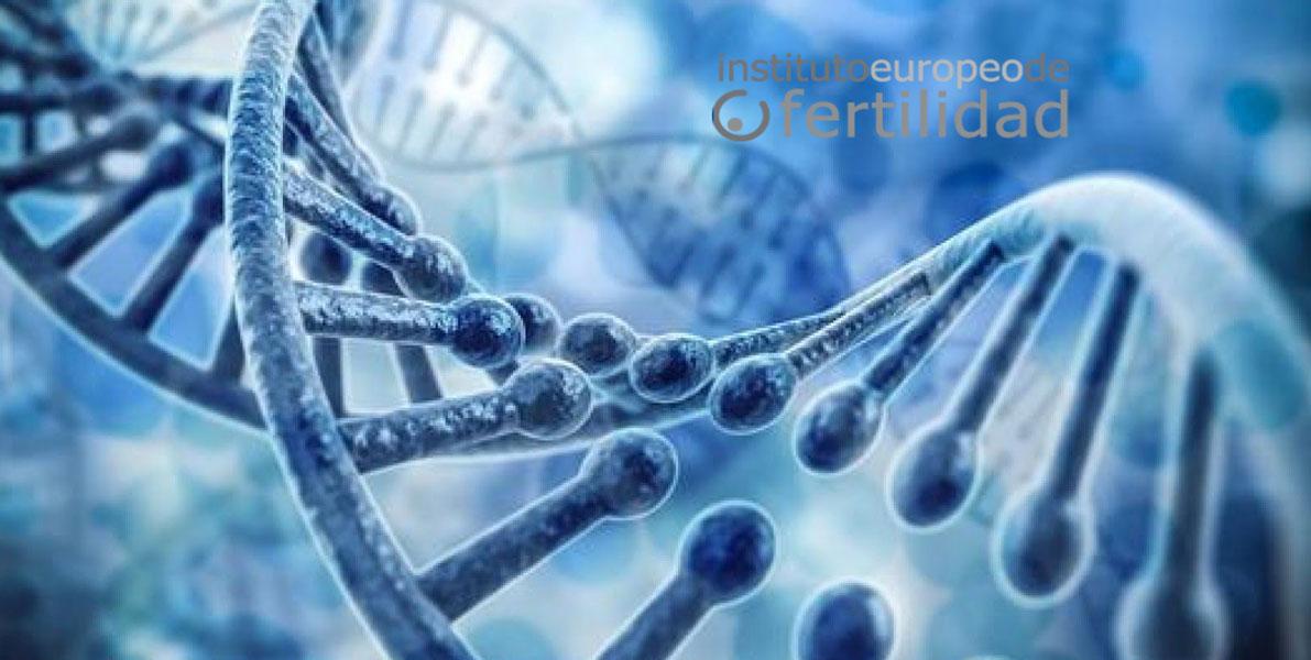 terapia-genica-vs-manipulacion-genetica-2.jpg