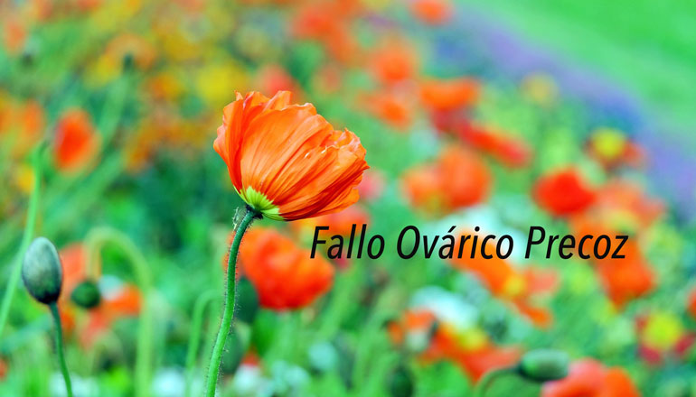 fallo-ovarico-precoz.jpg