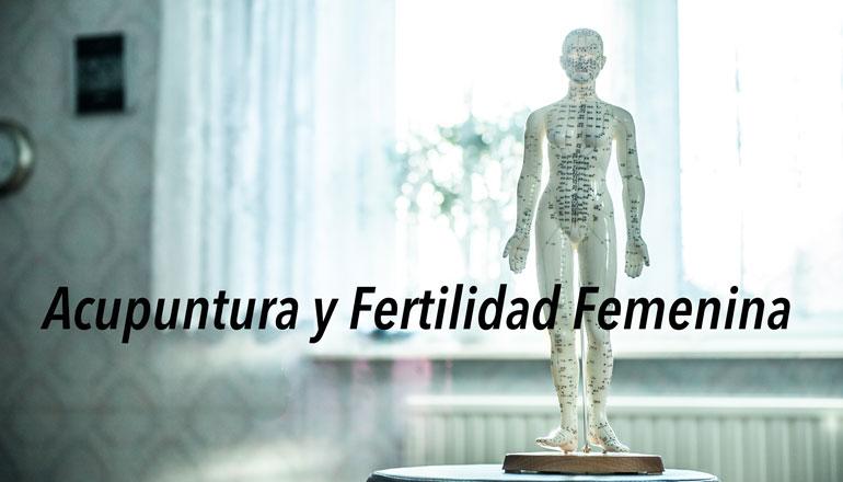 acupuntura-e-infertilidad.jpg