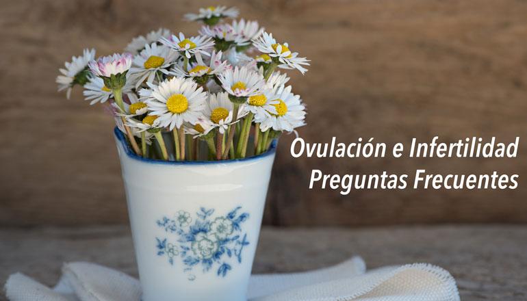 ovulacion-e-infertilidad-preguntas-frecuentes.jpg