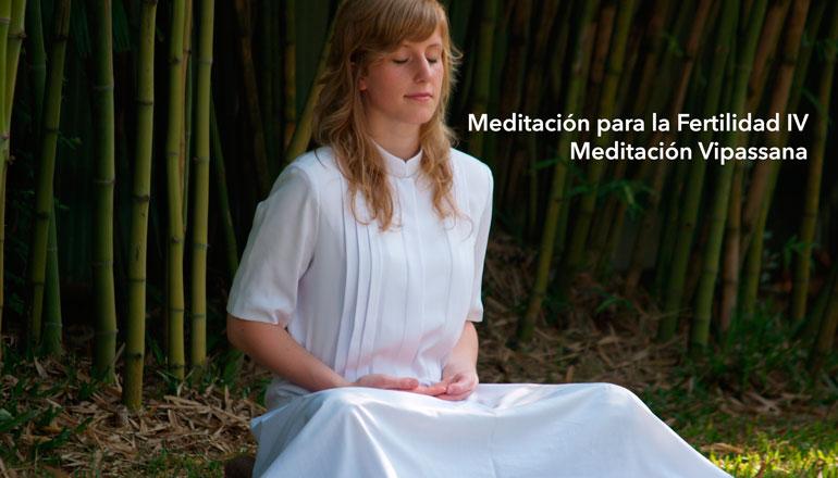 meditacion-para-la-fertilidad-meditacion-vipassana.jpg