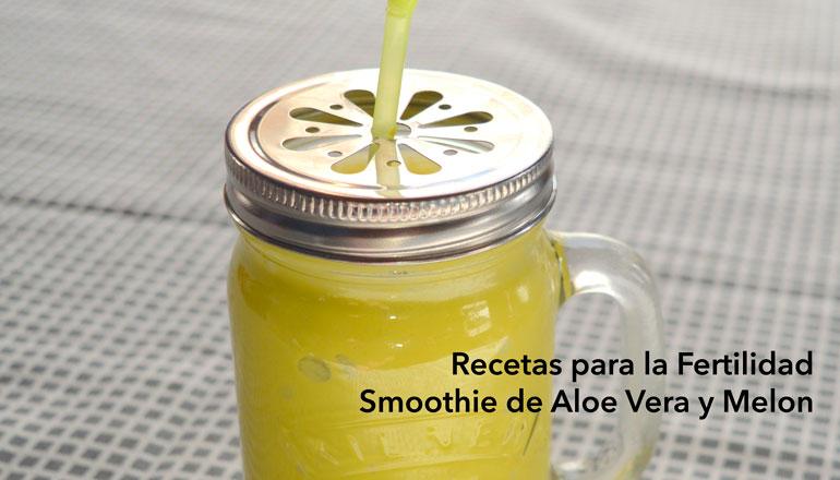 recetas-para-la-fertilidad-smoothie-aloe-vera.jpg