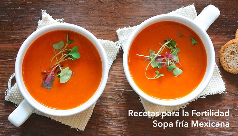 recetas-para-la-fertilidad-sopa-mexicana.jpg