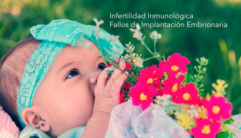 infertilidad-inmunologica-fallos-implantacion-embrion.jpg